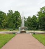 喷泉意大利peterhof petrodvorets 免版税库存照片