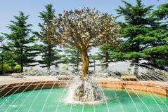 喷泉愿望` `树在第比利斯,乔治亚 免版税库存照片