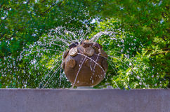 喷泉接近 库存图片