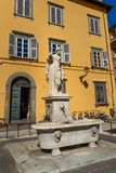 喷泉方形的圣的萨尔瓦托雷德拉Pupporona在卢卡 意大利 免版税库存图片