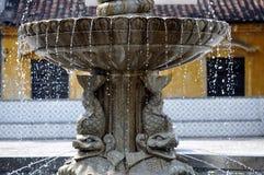 喷泉横向 库存图片