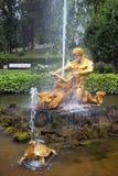 喷泉氚核和海怪在Pertergof,圣彼德堡 库存图片