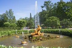 喷泉氚核每晴天在7月 peterhof 库存图片
