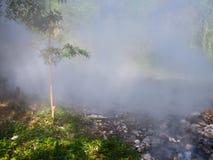 从喷泉温泉的薄雾在槐Nam党国家公园我 免版税库存照片