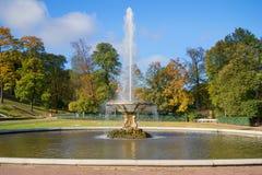 喷泉碗在更低的公园,金黄秋天 peterhof俄国 库存照片