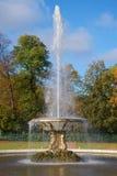 喷泉碗特写镜头,晴朗的10月天 Petrodvorets,俄罗斯 库存图片