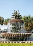 喷泉菠萝 库存图片