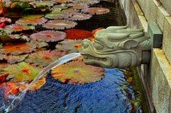 喷泉题头 免版税库存照片