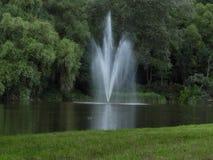 喷泉,水,小河,绿色,森林 免版税库存照片