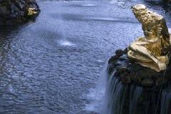 喷泉`大小瀑布`在Peterhof更低的公园,圣彼德堡,俄罗斯 免版税库存照片