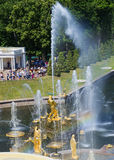 喷泉`森山`的看法在盛大小瀑布的顶面排的 Petrodvorets 免版税图库摄影