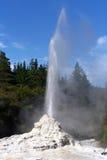 喷泉knox新西兰夫人 免版税库存照片