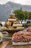 喷泉limone 库存照片