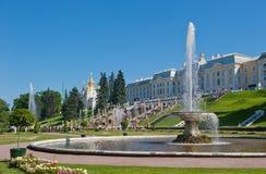 喷泉petergof彼得斯堡圣徒 库存图片
