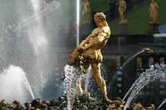 喷泉peterhof petrodvorets samson 免版税库存图片