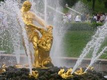 喷泉peterhof samson 免版税库存图片