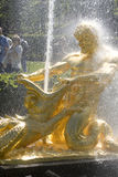 喷泉petrodvorets 免版税图库摄影