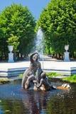 喷泉schonbrunn 免版税库存图片