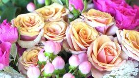 桃红色和米黄玫瑰 影视素材