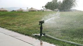 喷灌系统 早晨浇灌的草坪 股票录像