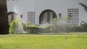 喷灌系统 浇灌的草坪在早晨 股票录像