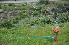 喷雾器在庭院里 库存图片
