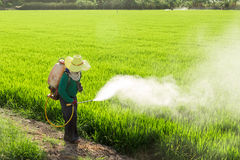 喷洒杀虫剂的农夫 免版税库存图片