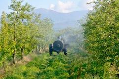 喷洒的苹果树可以 库存照片