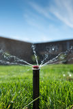 草坪洒水喷头 免版税库存照片