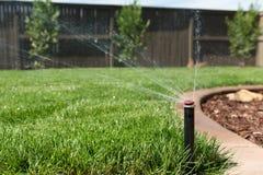 草坪洒水喷头 库存图片
