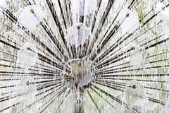 喷洒水的喷泉喷气机 免版税库存图片