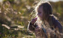 嗅到在草中的女孩一朵花 免版税库存图片