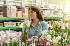 嗅到在零售店的美丽的女性顾客五颜六色的开花的兰花 t 免版税库存照片