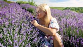 嗅到的礼服的美丽的少妇坐在淡紫色领域和开花 图库摄影