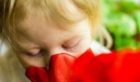 嗅到红色花的孩子 库存图片