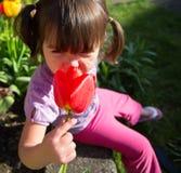 嗅到郁金香花的美丽的女孩在庭院里 库存照片