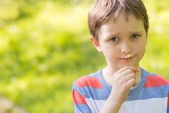 嗅到雏菊的甜小男孩 免版税库存图片
