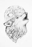 嗥叫在月亮白色背景的狼的剪影 皇族释放例证