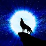嗥叫在月亮的狼 免版税库存图片