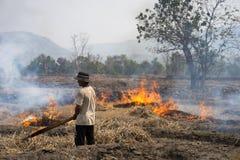 嘉莱,越南- 2017年3月12日:与用干燥米秸杆做的火的乡下领域在嘉莱,越南的高原中心 免版税库存照片