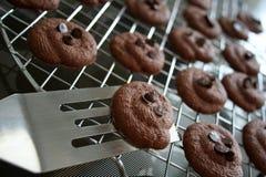 嘎吱咬嚼巧克力的曲奇饼 库存图片