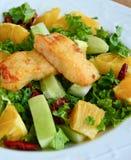 嘎吱咬嚼的蔬菜沙拉用胡桃、甜石灰和鱼 免版税库存图片
