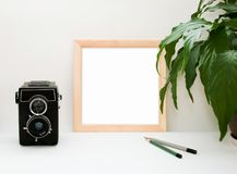 嘲笑木制框架、老照相机、植物和铅笔 与木框架的内部家庭方形的海报大模型和在白色的绿色叶 免版税图库摄影