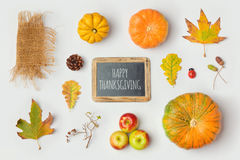 嘲笑的感恩节对象模板设计 秋天南瓜和秋天叶子 在视图之上 图库摄影