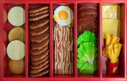 嘲笑的概念汉堡和炸薯条的 库存照片