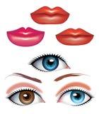 嘴唇和眼睛秀丽  向量例证