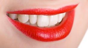 嘴唇牙 免版税库存照片