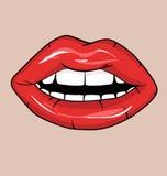 嘴唇红色性感 免版税库存照片