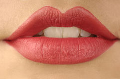 嘴唇红色teech白色 库存照片