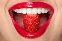 嘴唇 有红色唇膏和草莓的妇女 免版税库存图片